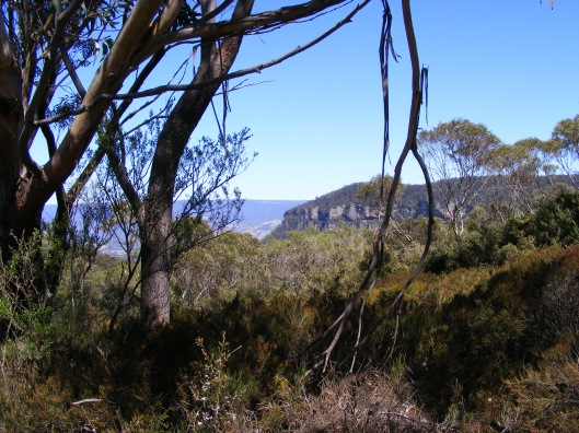 Cahills Lookout