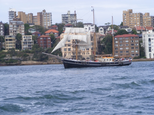 Tall ships in the Harbour