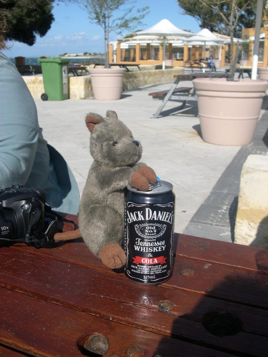 stuffed quokka attacking the drinks