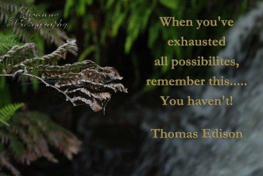 Thomas Edison Possibilites